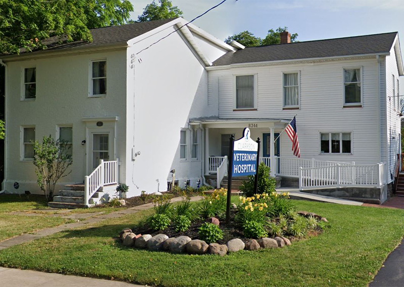 Clarkson Veterinary Hospital, Brockport